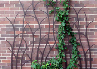 Branching Trellis by Trellis Art Designs
