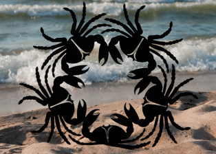 Crab Wreath I by Trellis Art Designs