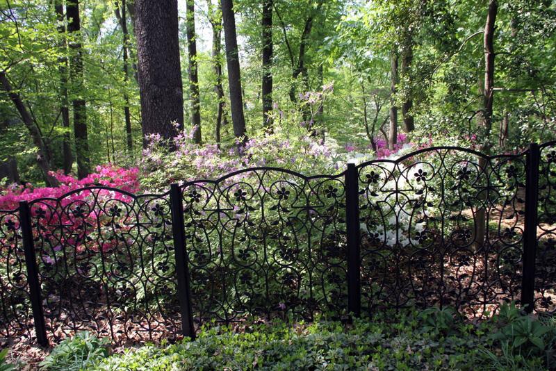 Azalea Fence by Trellis Art Designs