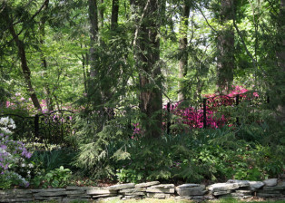 Fence in beautiful setting by Trellis Art Designs