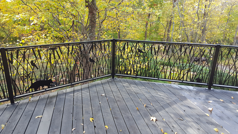 Deck Railing October 2017
