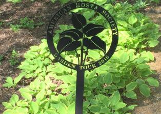 american hosta society marker