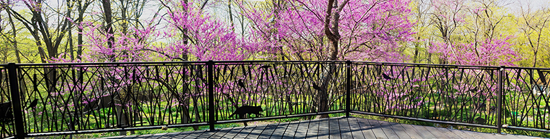 Deck Fence by Trellis Art Designs