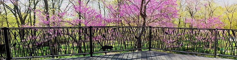 Deck Fence by Trellis Art Designs